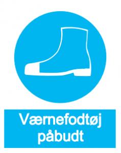 Beskyttende fodtøj  kap 6